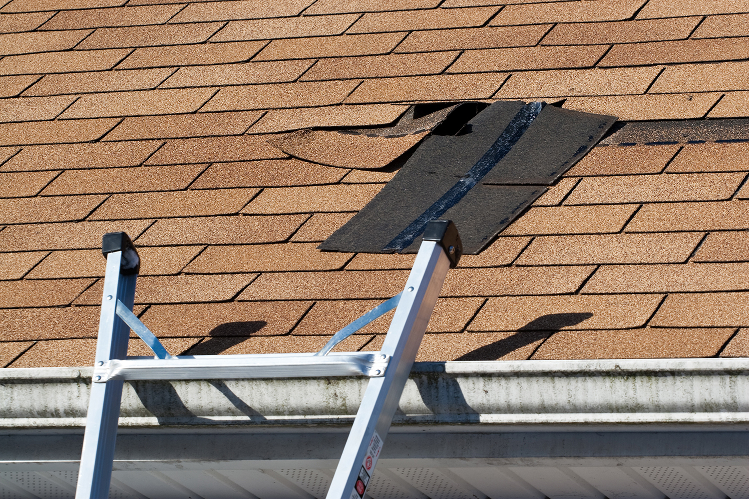 Preparing Your Roof for the Winter